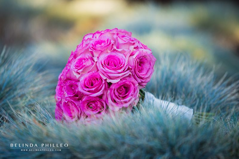 Hot pink roses bridal bouquet
